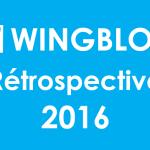 Rétrospective 2016 : 100 000 vues pour WINGBLOG